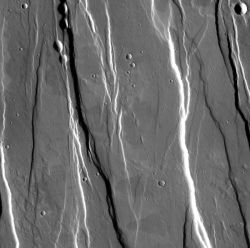 Roughly parallel faults scar the southern flank of Alba Mons, a large volcano. The faulting probably happened as the volcano collapsed into the empty magma chamber beneath the surface. Geologists call the raised parts horsts and the dropped-down sections grabens. The small pits at the top of the image include both collapse pits and impact craters. The collapse pits lie along the faults. (NASA/JPL-Caltech/Arizona State University)